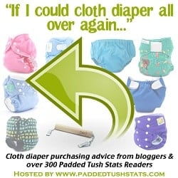 If I could cloth diaper all over again