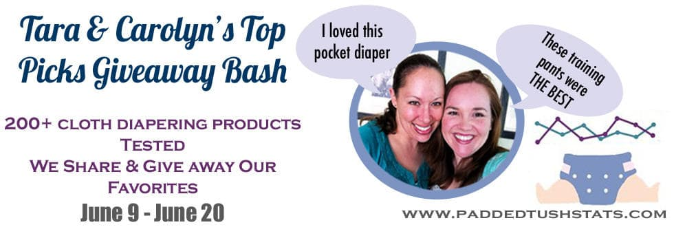 Tara and Carolyn's Top Cloth Diaper Picks